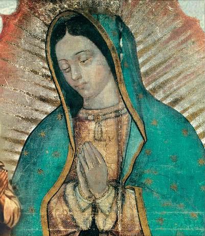 Imagenes De La Virgen De Guadalupe  Fotos De La Virgen De Guadalupe